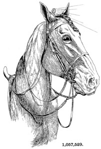 patent 1057529 Portable Electric Light for horse riding