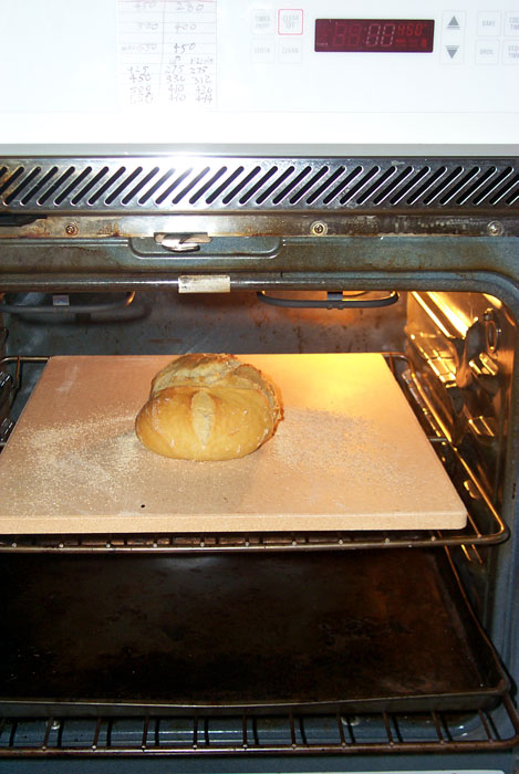 convection toaster oven with cooktop