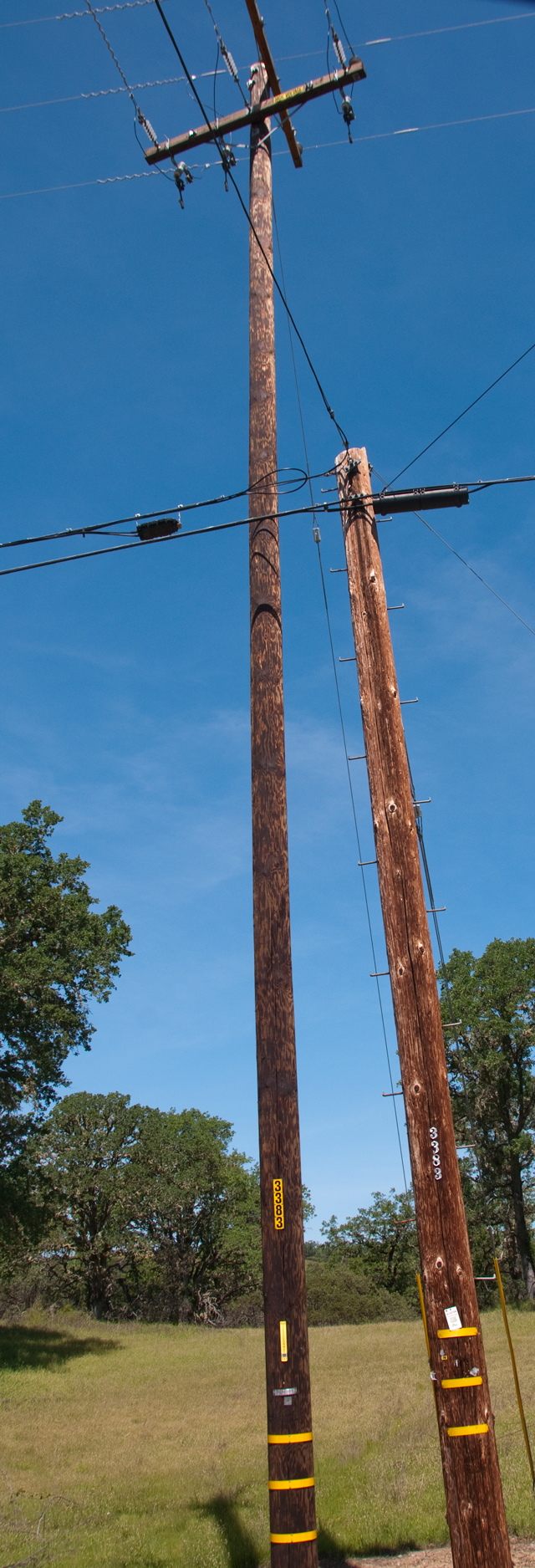 Telephone Power & CATV Poles
